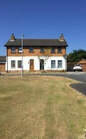 Property for rent newtownards
