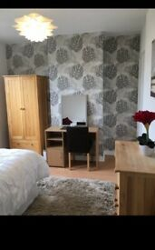 A beautiful double room to rent