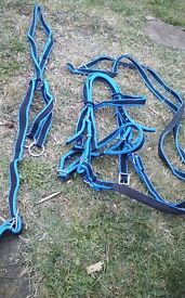 Washable pony bridle for sale