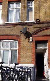 NO DEPOSIT DSS OKs.c studio flat PRIV TERR Battersea Park&Chelsea Bridge suit couples,SINGLE zone2