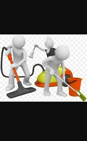 Experienced home or work place cleaner and Carpet Cleaner