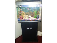 Aqua One 620 Aquarium AR-620 90L Fish tank AquaOne, with Cabinet Stand, Fish, Deco, Filter, Air-pump