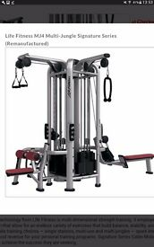 Life Fitness MJ4 Signature multi jungle multi dimensional strength training station