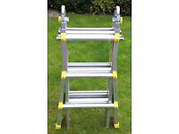 Cosco Combination Ladder