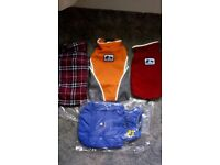 DOG JACKETS AND OTHER ACCESSORIES : - price for small jacket - will take an offer for job lot