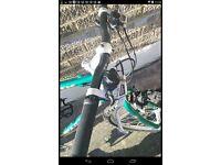 Men's Saracen bike