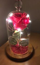 Light up jar with rose