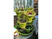Plant tower holds 9 pots