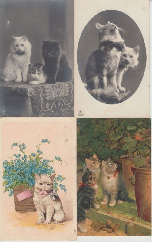 CATS CHATS 79 Vintage REAL PHOTO ARTIST SIGNED Postcards Mostly pre-1950