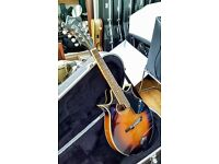 Aria AM300BS Mandolin, complete with Gator Hard Case - excellent condition