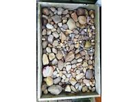 LARGE BOX OF PEBBLES - various sizes