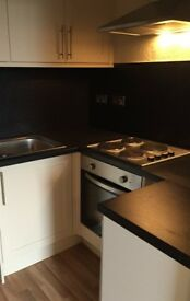 1 bed flat to let- Wardlaw Street, Edinburgh