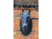 Cast iron horses heads