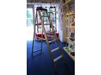 Industrial / home aluminium ladder. Very good condition. FREE DELIVERY within Edinburgh