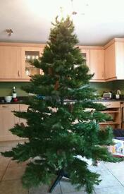 7ft Artifical tree with pine cones.