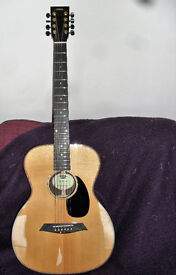 DRL 8 STRING ACOUSTIC GUITAR WITH FISHMAN PICK UP