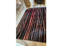 HUGE quality rug