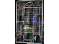 huge cage suitable for large birds or rodents.