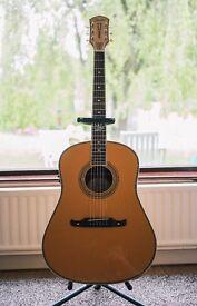 Fender Ron Emory Dreadnought Guitar