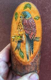 Kestrel on wood