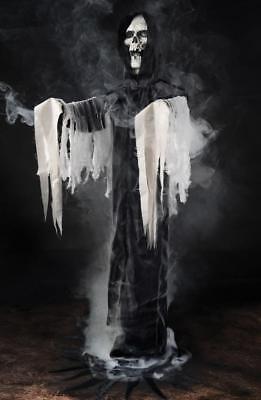 LIFE SIZE GRAVEYARD REAPER SPIRIT FOR FOG MACHINE HALLOWEEN PROP HAUNTED HOUSE - Spirit Fog Machine