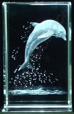 Crystal Glass Laser Etched Dolphin Ornament BNIB (sb34)