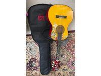 Juniors Guitar including TGI Case