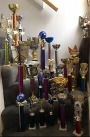 Large number of competition trophies