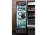 Single Door Display Freezer *SHOP CLOSING DOWN*