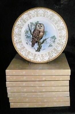 Complete Set 8 of Boehm Owl Plate Collection Bone China Ltd Ed.