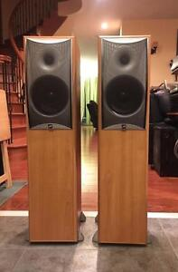 Attractive Angstrom Omega II Tower Speakers	AO 203 **Reduced**