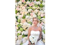 Hire Flower Wall,£ 239 All Included