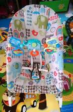 Fisher-Price Deluxe Infant-to-Toddler Rocker Tarragindi Brisbane South West Preview