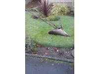 garden ornamental plough