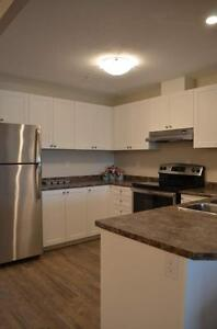 Fallowfield Towers IV - The Birch Apartment for Rent Kitchener / Waterloo Kitchener Area image 17