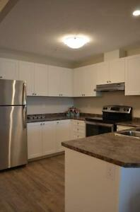 Fallowfield Towers IV - The Aspen 2 Apartment for Rent Kitchener / Waterloo Kitchener Area image 17