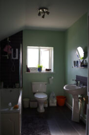 Lovely double room in friendly house share off Gloucester Rd