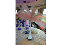 OSTRICH FEATHER CENTREPIECES, MARTINI VASES, CRYSTAL VASES, FISH BOWLS, BALLOONS, TO HIRE