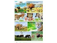 London eye Colchester zoo wooburn safari longleat Safari legoland thorpe park days out