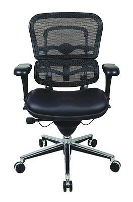 Ergohuman Raynor Lem6erglo Ergonomic Low Back Office Chair Meshleather
