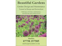 Garden Design and Maintencance