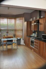 Modern 1 bed, furnished apartment, Flat 1, S7, £495 pm