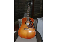 GIBSON HUMMINGBIRD ACCOUSTIC GUITAR IN SUPERB CONDITION. BONE BRIDGE & NEW GROVER 18.1 TUNERS FITED