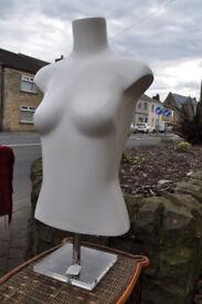 universal display top half female mannuequin