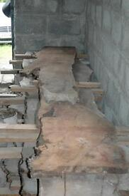 Yew boards.