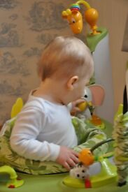 Jungle Jumperoo. Suitable for 6 months +