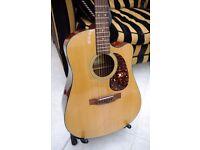 Rare & Stunning CF Martin & Co Sigma DM-2C Cutaway Acoustic Guitar