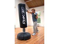 Reebok Tube Trainer Freestanding Punching Bag **£120 ono**