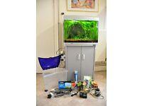 Aqua One 620 aquarium with fish,plants and accessories