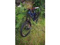 Ellsworth Dare Downhill Mountain Bike Marzocchi Chris Saint Raceface Mavic Sram